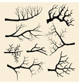 Tree branches set in hand drawn style vector image vector image