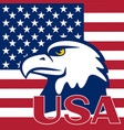 flag of the usa and eagle vector image
