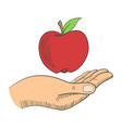 a hand with an apple vector image