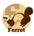 abc cartoon ferret vector image
