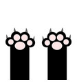 black cat paw print pads leg foot with scratching vector image vector image