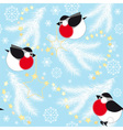Blue christmas background with bullfinches vector image vector image