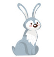 bunny character sitting still rabbit or hare vector image vector image