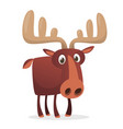 cool cartoon moose isolated vector image vector image