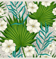 flowers and leaves palm trees vector image vector image