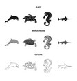 isolated object of sea and animal sign set of sea vector image