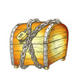 treasure chest protected metal chain color vector image vector image