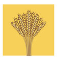 wheat ears barley or rye flat icon vector image