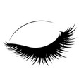 closed eye with long eyelashes vector image vector image