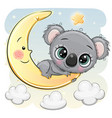 cute cartoon koala on moon vector image vector image