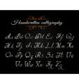Handwritten Calligraphy Font vector image vector image