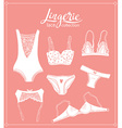 Lace lingerie set underwear design Outline hand vector image