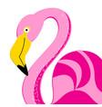 portrait a pink flamingo vector image vector image