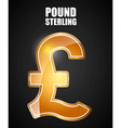 pound sterling symbol vector image