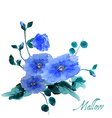 Watercolor hand drawn flowers and leaves of the vector image vector image