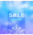 Winter sales background vector image vector image
