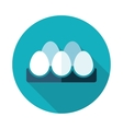 Chicken eggs in a tray flat icon with long shadow vector image
