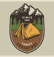 colorful camping and outdoor recreation label vector image vector image