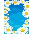 daisies frame vector image vector image