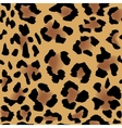 Leopard skin pattern vector | Price: 1 Credit (USD $1)