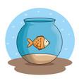 pet fish in aquarium vector image