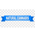 blue stripe with natural cannabis text vector image