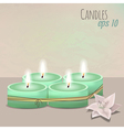colorful with candles set and flower vector image