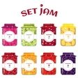 Set of summer jams vector image