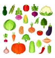 Vegetable summer harvest vegan food collection vector image vector image