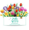 arrangement with multicolor spring flowers vector image vector image