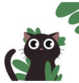 black cat kitten flat eps10 vector image