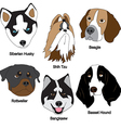 dog face set vector image