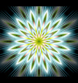 fantasy flower mandala closeup in fractal vector image vector image