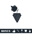grapes icon flat vector image vector image