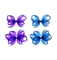 Set of Purple Light Blue Transparent Gift Bows vector image vector image