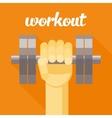 sport workout dumbbell vector image