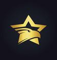 star eagle gold logo vector image vector image