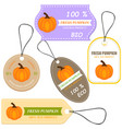 vegetable tag and farm market vector image vector image