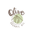 organic olive oil label with olive on a branch vector image