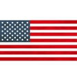 True proportions USA flag with texture vector image