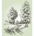 A path in the forest vector image vector image