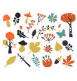 autumn colorful leaves set isolated on white vector image