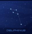 constellation delphinus dolphin night star sky vector image vector image