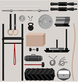 crossfit sport equipment vector image