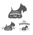 grooming logo set scottish terrier icon vector image