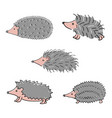 hedgehog hand drawn vector image vector image