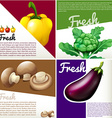 Infographic poster with fresh vegetables vector image vector image