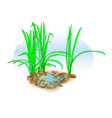 small lake with grass on the shore for landscape vector image