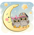 two cute owls on the moon vector image