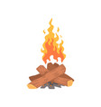 bonfire camping fire cartoon vector image vector image